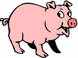 Swine Flu News