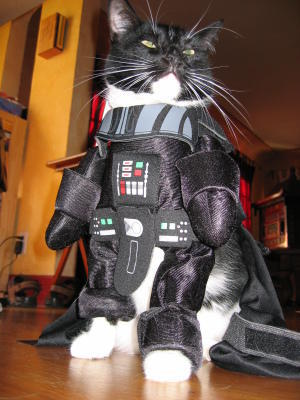 Darth Meowder